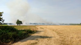 The Field is on fire?